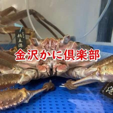 金沢かに倶楽部テキスト画像